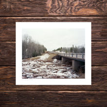 Picture of Ice Jam - Polka Party Edition