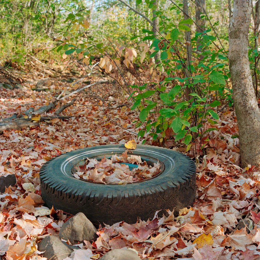 Picture of A Fall Tire - Study 1, Duluth, Minnesota, October 2020
