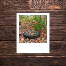 Picture of A Fall Tire - Study 1 - Everyday Print