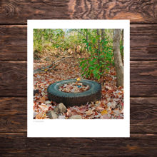 Picture of A Fall Tire - Study 1 - Everyday Mayhem Edition