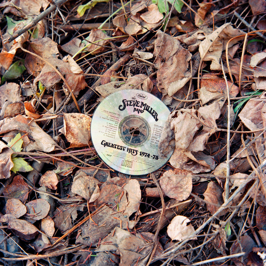 Picture of Discarded Steve Miller Band CD, Duluth, Minnesota, November 2020