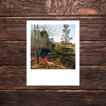 Picture of Lester River Snow Fencing - Everyday Print