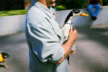 Picture of Man with a Duck, June 2011