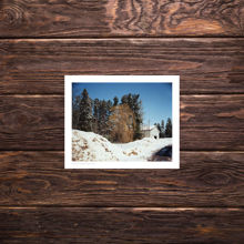 Picture of Tree - Everyday Print