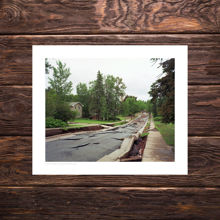 Picture of The Collapse of Vermilion Road - Polka Party Edition