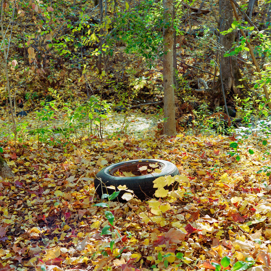 Picture of A Fall Tire - Study 2, Duluth, Minnesota, October 2020
